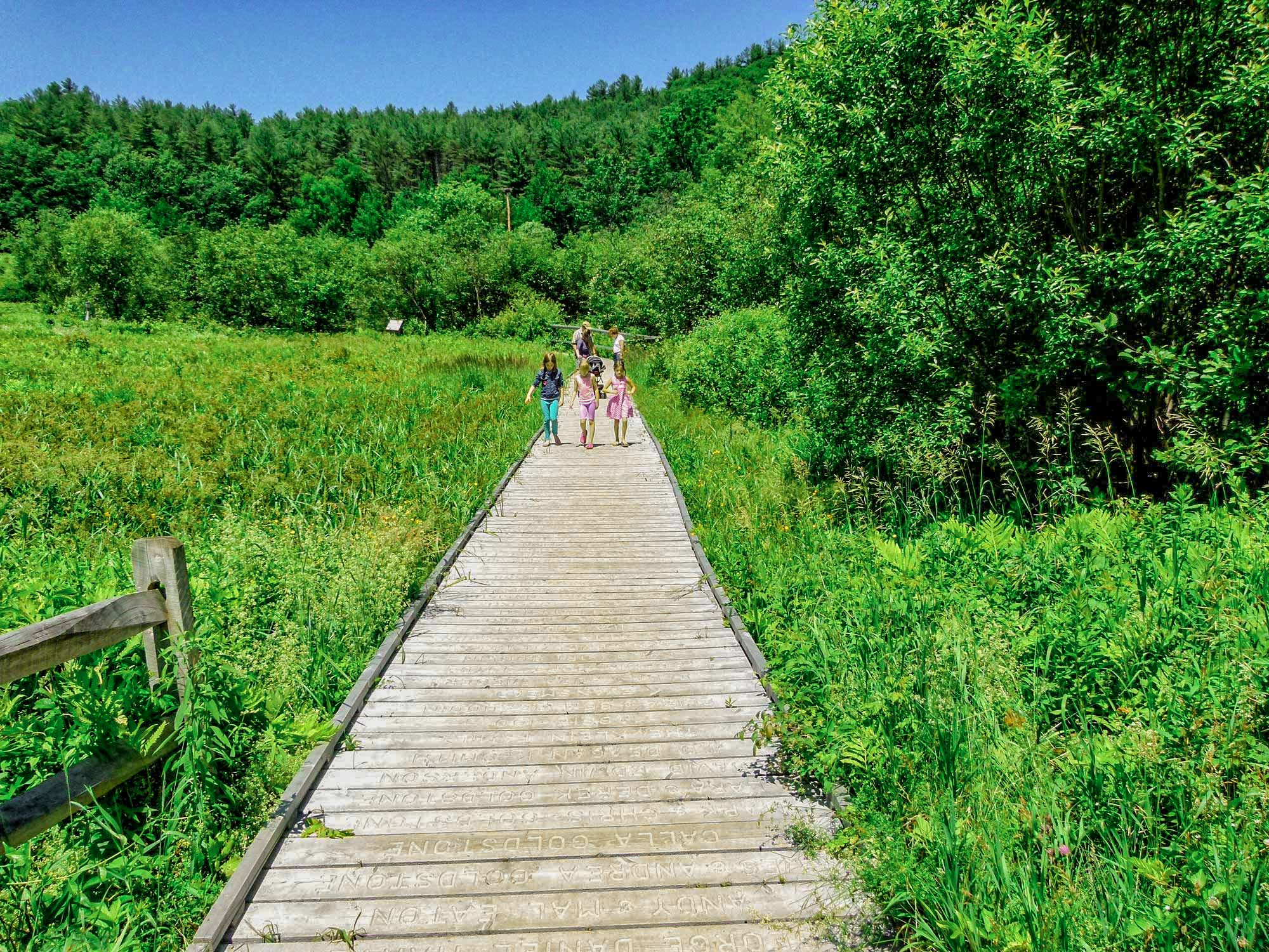 Children walking on marsh boardwalk