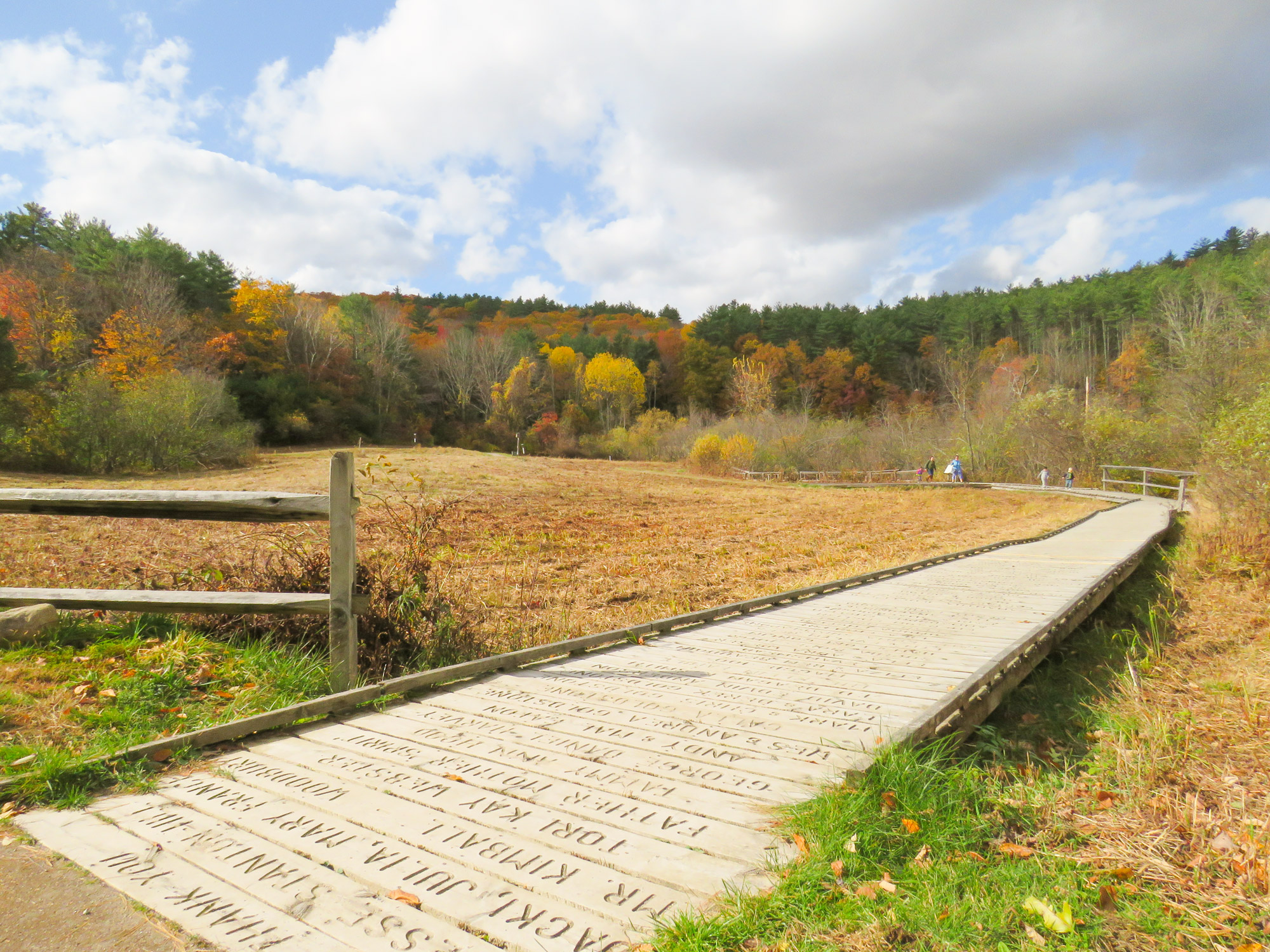 Marsh Boardwalk in the fall