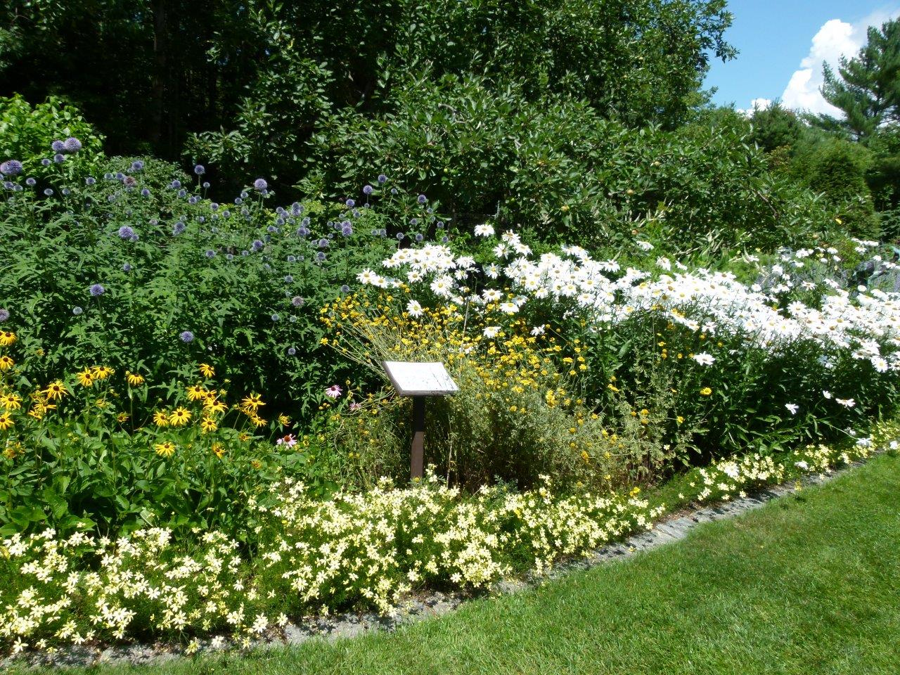 Kirkwood Gardens in bloom