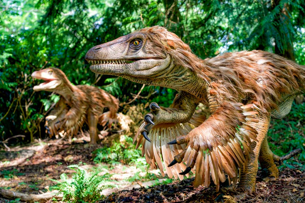 Dinosaurs Alive Squam Lakes Natural Science Center