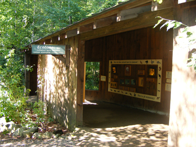 Ecotone Mammal Exhibit