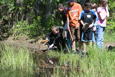 Middle School programs at Squam Lakes Natural Science Center