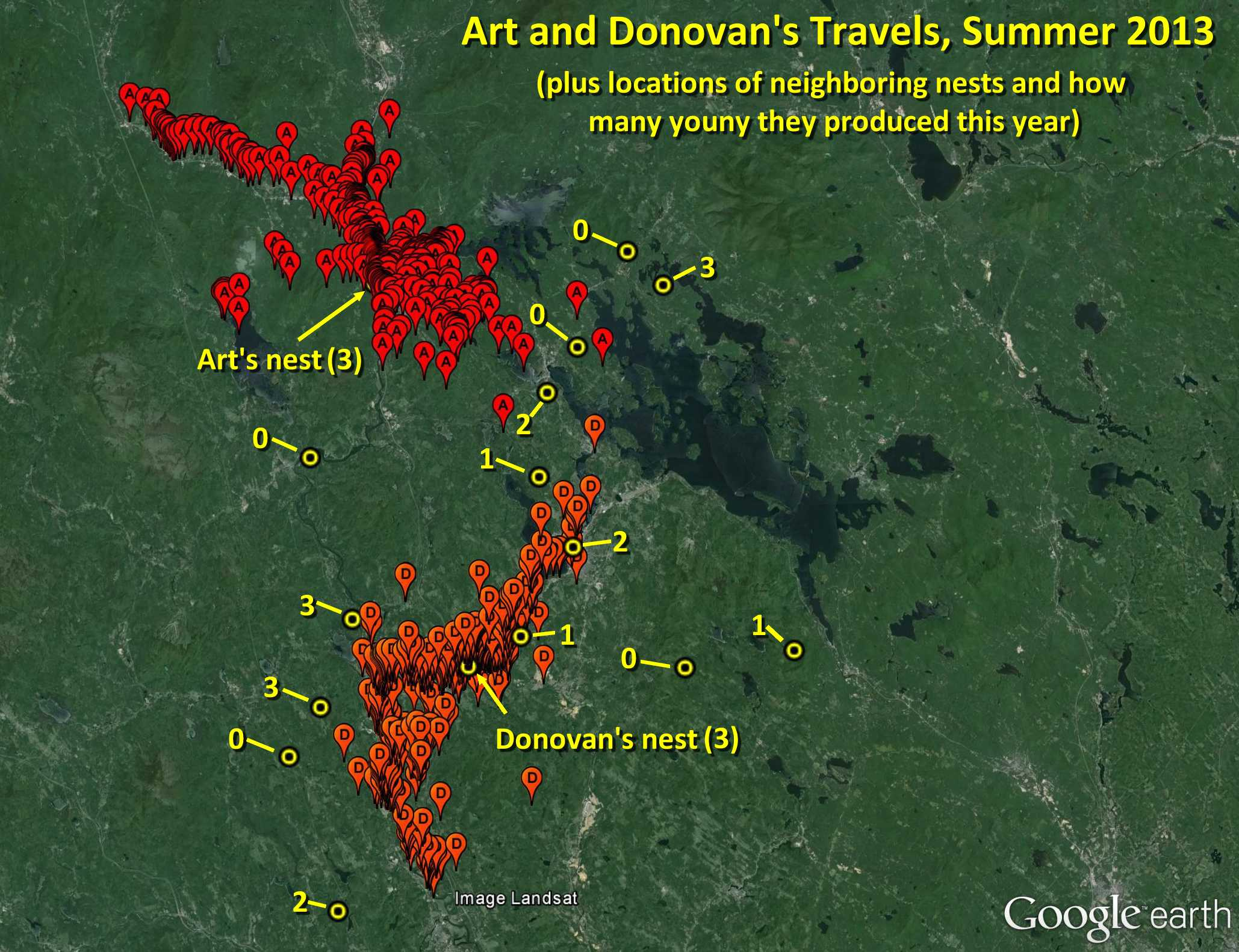 Art and Donovan's territories summer 2013