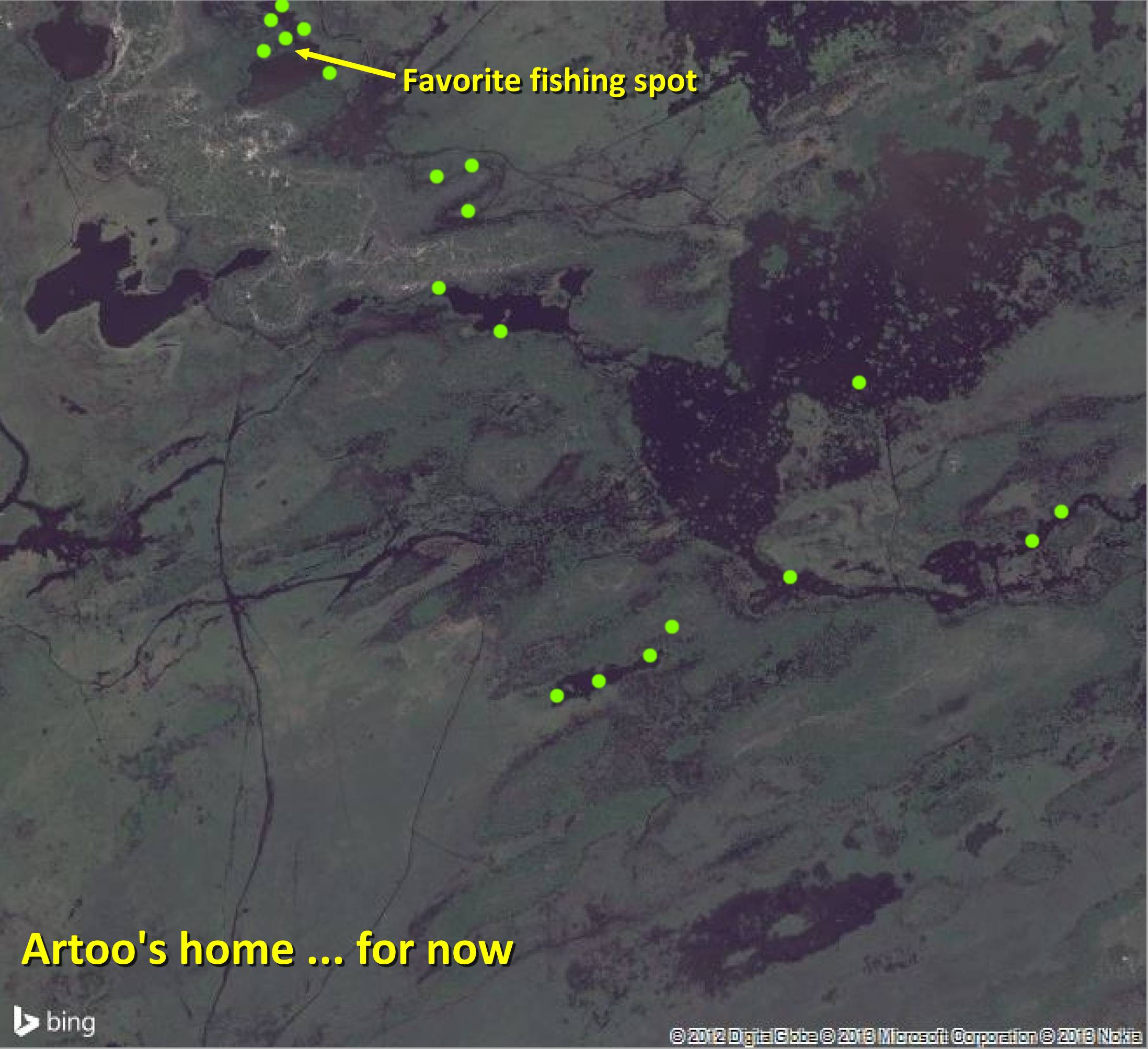 Artoo - November 1, 2013 (Bing Map)